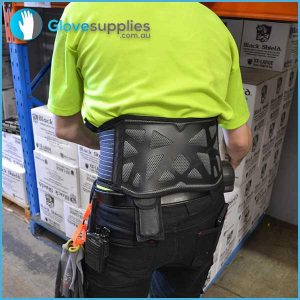 Back Support Brace - for more info go to glovesupplies.com.au